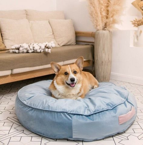 Pet Bed Barrie